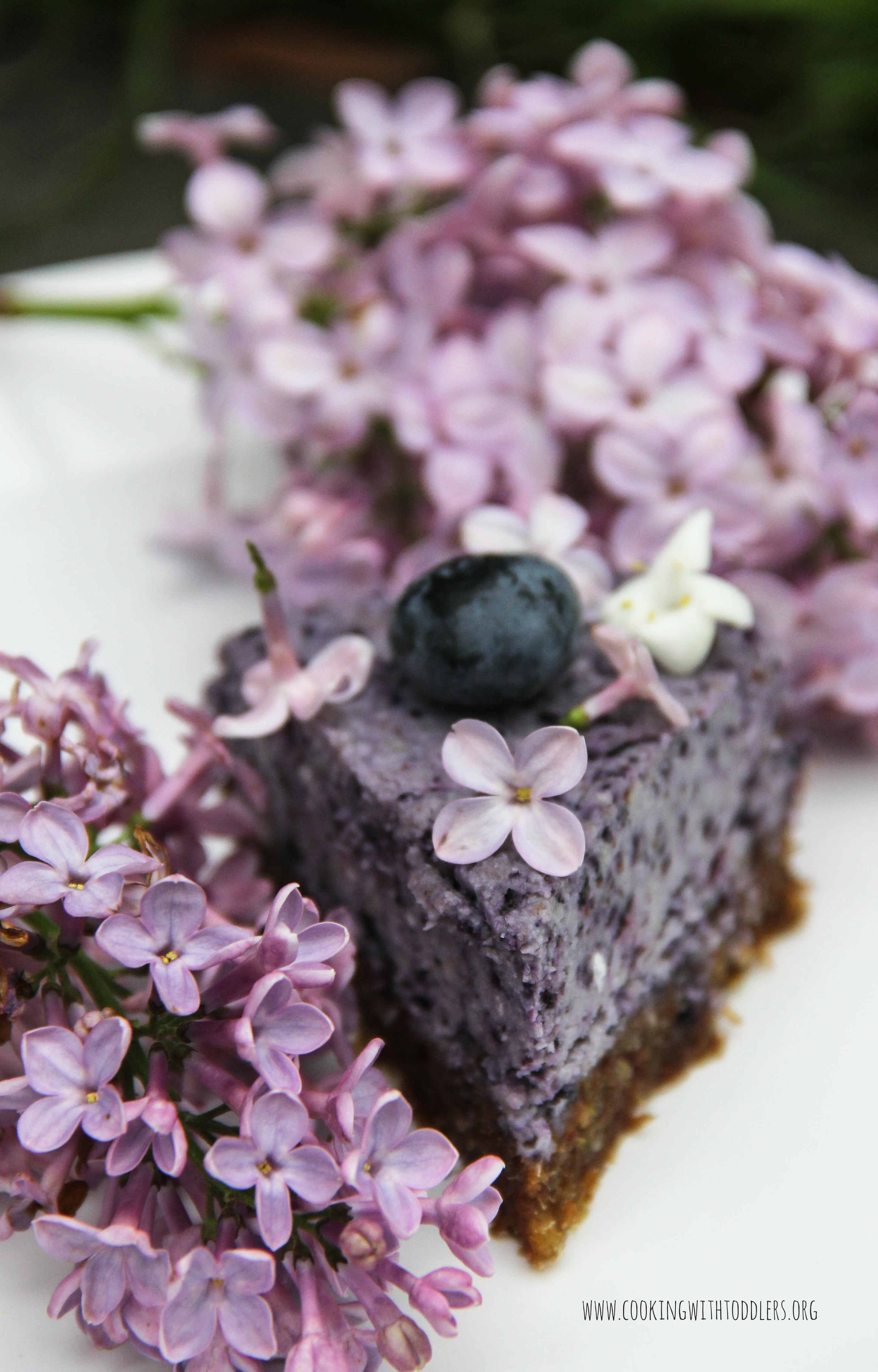Blueberry Chia Seed Cashew Cake Recipe Healthy Ideas For